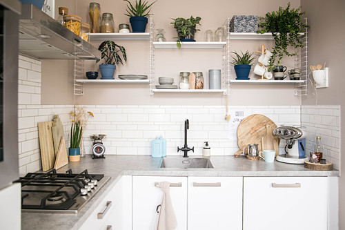 Utensils and houseplants on shelves on beige wall of L-shaped fitted kitchen