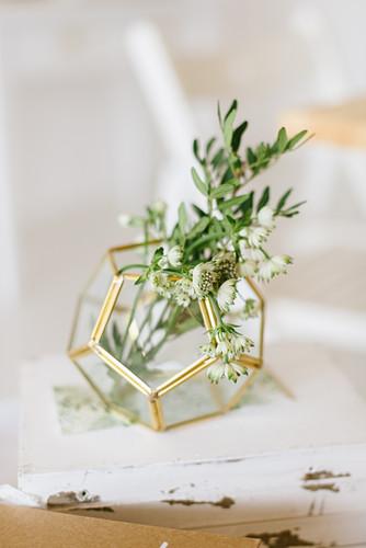 Blume in geometrischer Vase