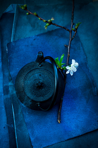 Steaming teapot and sprig of flowering cherry