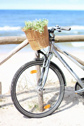 Bicycle leaning against wooden fence on beach