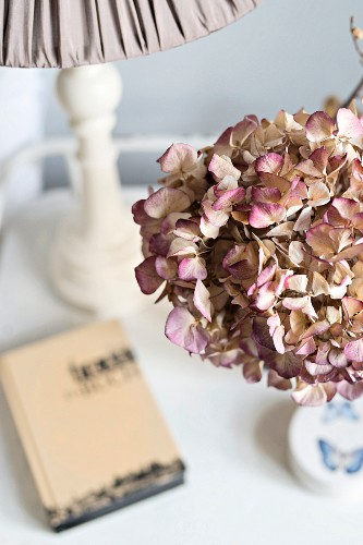 Dried hydrangea flowers, book and table lamp on bedside table