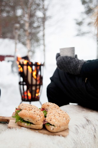 Sandwiched on wooden board for winter picnic