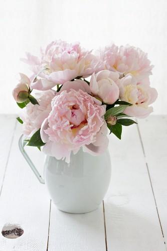 Bouquet of peonies in jug