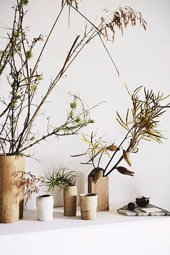 Autumn branches in vases