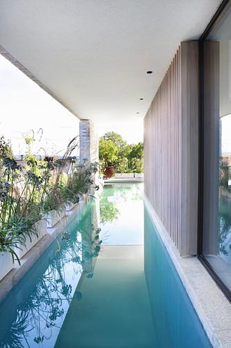 Long, narrow swimming pool along wall of modern, architect-designed house