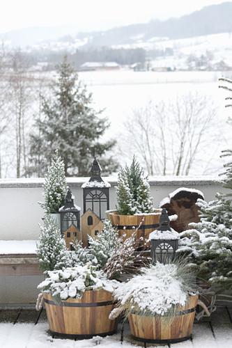 Pflanzen in Trögen auf dem Balkon mit Blick auf verschneite Landschaft