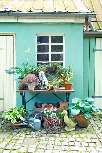 Pflanzen und Vintage-Deko auf und vor einem Tisch vor grünem Haus