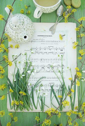 Snowdrops, cornelian cherry and teapot on sheet music
