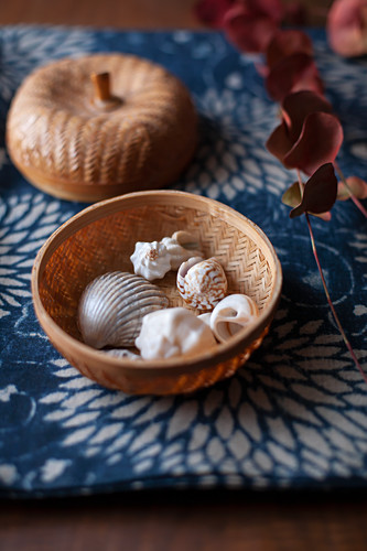 Eucalyptus sprig in Autumn colours and seashells in basket on blue fabric