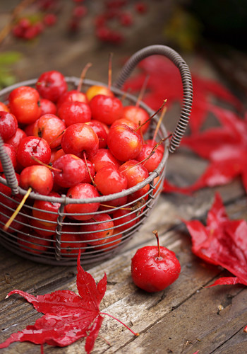 Basket of crab apples