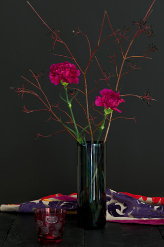Modern arrangement of carnations and twigs in glass vase