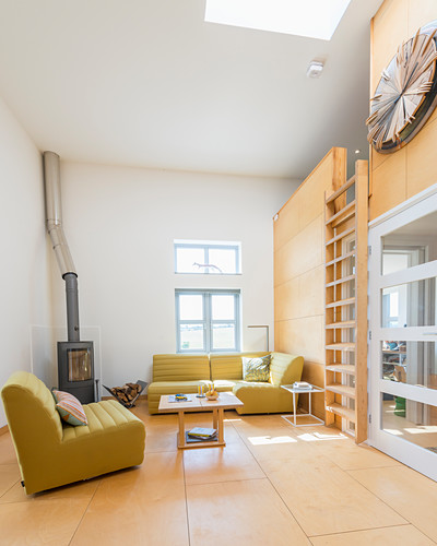 Living room with plywood floor and ladder leading to gallery level