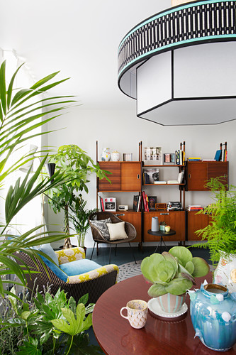View past plants on table to retro shelving