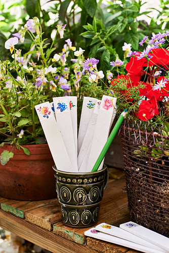Handmade plant labels and potted flowering plants