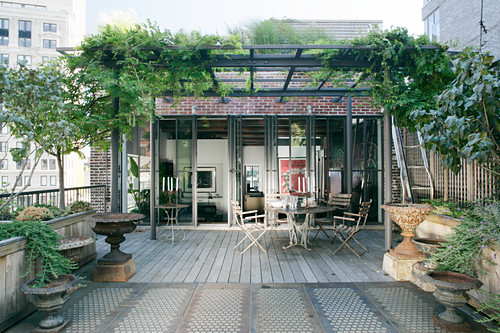 Climber-covered pergola on roof terrace in New York