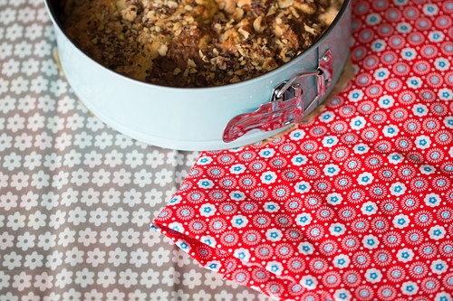 Cake in springform pan and handmade oilcloth cake bag