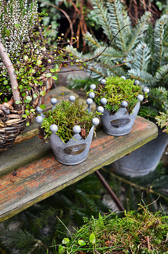 Potty In Crown Form Filled With Moss