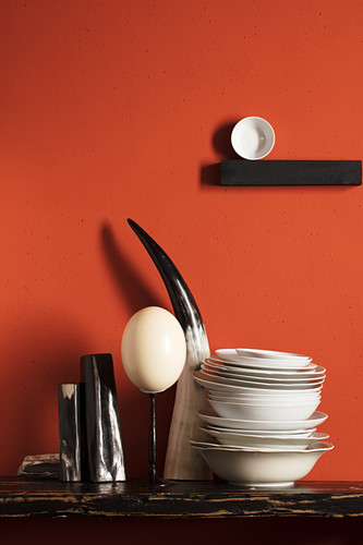 Ostrich egg, cow's horn and porcelain bowl on shelf on red wall