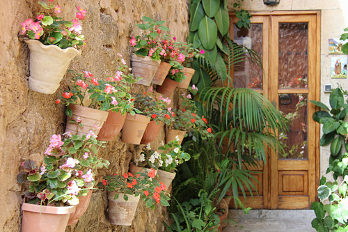 Wall pots with ice begonias and industrious Lieschen