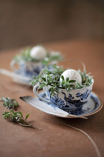 Speckled eggs in Easter nest in blue-and-white china teacup