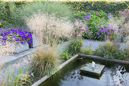 Various plants around pond with raised edge and fountain