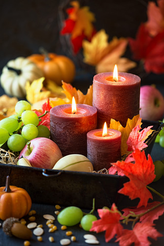 Harvest festival arrangement of candles, autumn fruits, pumpkins and autumn leaves