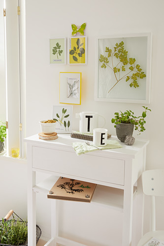Pressed leafy branches sandwiched in glass above console table with flower press on shelf