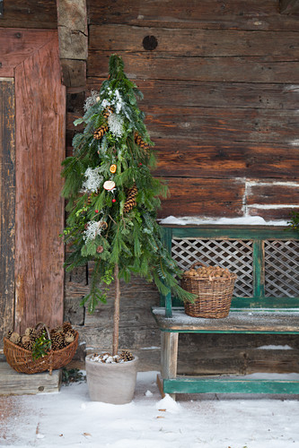 Weihnachtlicher DIY-Stabbaum aus verschiedenen Nadelzweigen gebunden