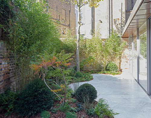 Marble terrace surrounded by plants and next to glass wall