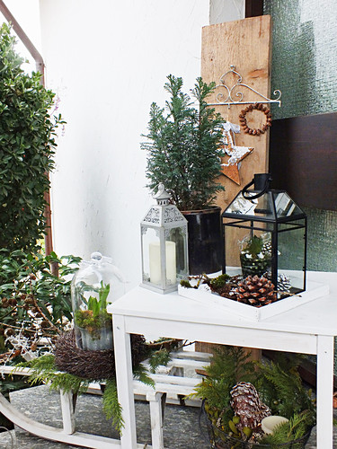 Winter decorations on white table and sledge