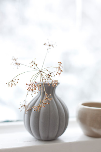 Dried flowers in vase