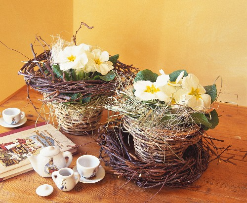 Children's tableware with hare motif & primulas in wicker pots