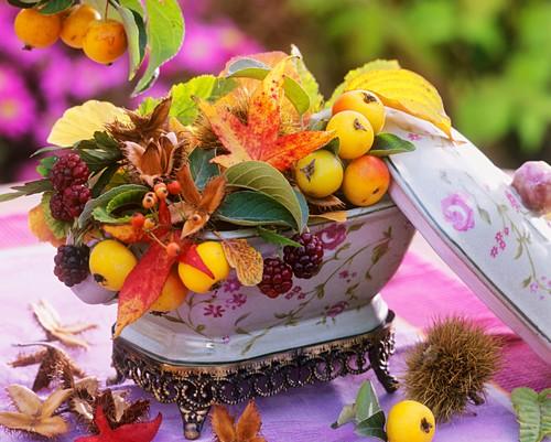 Arrangement of autumn leaves, crap apples and beechmast