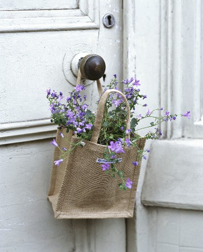 Flowers in a jute sack