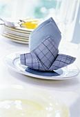 Blue Napkin on Plate
