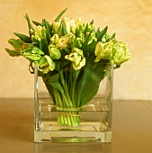 White tulips in a glass container