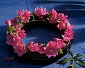 Wreath of purple flowers (wild mallow)