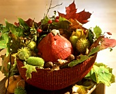 Bowl with small pumpkin, chestnuts, leaves as autumn decoration