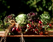 Window box with cabbages and autumn decoration