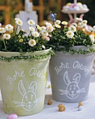 Two pots of daisies with the words 'Frohe Ostern' (Happy Easter)