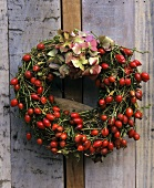 Wreath of rose hips with hydrangea