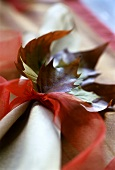 Autumn leaves as table decoration