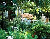 Gedeckter Kaffeetisch mitten im üppigen Grün eines Gartens