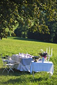 Table laid for celebration in meadow