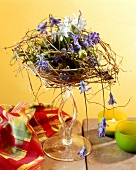 Witty arrangement of hyacinths