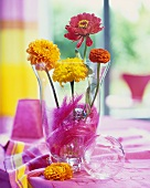 Flower quartet: dahlias, tagetes, zinnias in glass vase