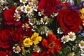 Various summer flowers