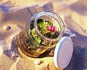 Kalanchoe in a bottle garden