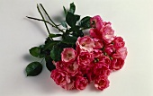 Three stems of small roses