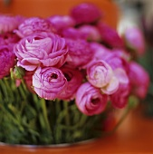 A bouquet of Ranunculus